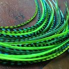 Feather Hair Extensions Neon Bright Green Grizzly Turquoise 6 Long Hair Feathers For Feather Extensi