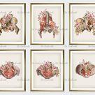 6 Female Anatomy Vintage Poster Female Pelvis Art Print Pelvis Bone Poster Pregnant Woman Gynecologist Gift Medical Art Doctor Office Decor