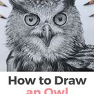 10 Amazing and Easy Step by Step Tutorials & Ideas on How to Draw an Owl with Pencils and more