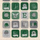 Slytherin iOS 14 Aesthetic, Slytherin App Icon Pack, Harry Potter iPhone Icons, Harry Potter Icons