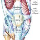Knee Popping: The Vastus Medialis