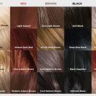 Our L'Oréal Paris Superior Preference Hair Color Chart
