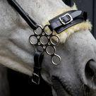 Flower hackamore horse in black and fur