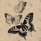 Butterflies Butterfly Vintage image Instant Download Digital printable clipart graphic - scrapbooking, burlap, kraft, mail art etc HQ 300dpi
