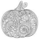 'Beautiful Pumpkin Coloring Art' Prints  | AllPosters.com