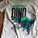 Dinosaur tee shirts 4/5 VGUC, minimal signs of wear except softening of fabric from washing (best way to describe it IMO) All are side 4/5 One is color oatmeal with spinosaurus Olive green T. rex or maybe a raptor Blue T. rex. OshKosh B'gosh Shirts & Tops Tees - Short Sleeve