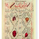 Box Canvas Print. Page from the Canon of Medicine by Avicenna