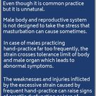 Erectile Dysfunction Remedies, Herbal Treatment for ED