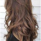 level 5 ash brown hair
