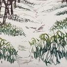 1970s Anne Dowden February Crocus and Snowdrop Botanical Illustration