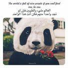فك ن أنت منـهم Cool Words Qoutes Arabic Phrases