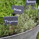 Ein Kräutergarten in der Zinkwanne für kleine und große Gärtner DIY