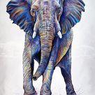 The Bluff – Fine Art Prints • Collection   TeshiaArt