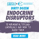 Endocrine Disruptors: What, Why and How?