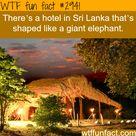 hotel in sri lanka that is shaped like an elphant
