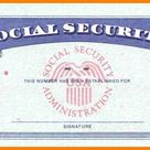 Free Blank Social Security Card Template Download - Sparklingstemware