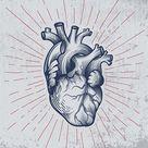 Anatomically correct hand drawn line art. Tattoo, tee shirt print...