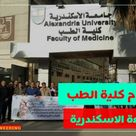 بريمو هندسة نظام الدراسة في كلية الطب جامعة الاسكندرية واقسام Faculties Medicine University