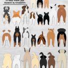 Dog Butts Bundle Clipart 25 Dog Rear End Graphics Aussie, Labrador, Corgi, Pug, Pitbull, Boxer, GSP, Retriever, Beagle, Poodle, Rottweiler