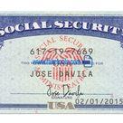 USA Social Security Card psd Template: SSN Psd Template