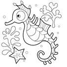 Leuk voor kids   zeepaardjes-0010