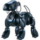 AIBO (Artificial Intelligence roBOt, homonymous with