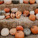 October Desktop and Mobile Wallpaper - sonrisastudio.com