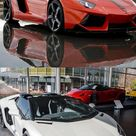 Who loves this Lamborghini Luxury Cars Photo Collection?