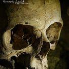 .Skull. by KimberleePhotography on DeviantArt