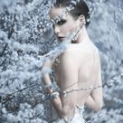 SNOW by KATHERLINE LYNDIA Photography on 500px