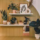 Pflanzendeko für Ikea Ivar