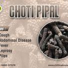 Choti Pipli
