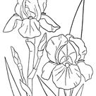 Spring Scenes Coloring Page 15 - Spring Coloring Sheets: Bluebonkers