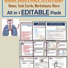 Editable Teaching Resources on Human Respiratory System for Grades 4 to 6 and Homeschooling