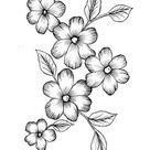 Wild Flowers  PDF Coloring Page   Etsy