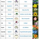 Month Flowers