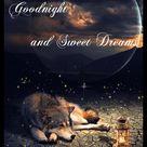 Wolf Good Night Gif