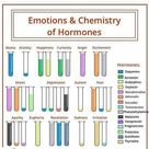 Emotions and chemistry of hormones