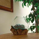 Cohasset Molten Glass Bowl & Natural Wood Luminary Sculpture at BestNest.com