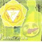 CHAKRA AND THE SEVEN GLANDS OF THE ENDOCRINE SYSTEM