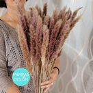 Minimalist Interior Design Dried Pampas Grass   30 Stems Brown Tabletop Pampas Grass   Boho Pampas G