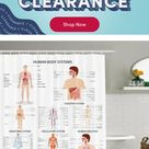 Ambesonne Human Anatomy Complete Chart of Different Organ Body Structures Cell Life Medical Illustration Single Shower Curtain, Polyester | Wayfair