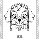 Paw Patrol Cartoon Skye Head Coloring Page