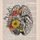 Nature Anatomy - Brain Flower - Anatomy Illustration - Medical Art Print - Brain Wall Art - Anatomy Print - Anatomical Poster - SKA140
