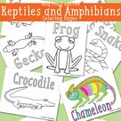 Reptile Coloring Pages - Free Printable