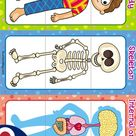 Worksheets For Learning About Our Bones and Organs