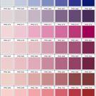 PMS Color Chart