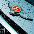 Bentley Arnage 2003 RL badge