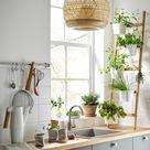 Essbare Dekoration in der Küche