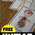 FREE Human Body Playdough Mats